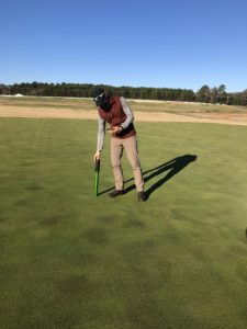 Cover photo for Advancing Knowledge Through Turfgrass Center Research – Rufty