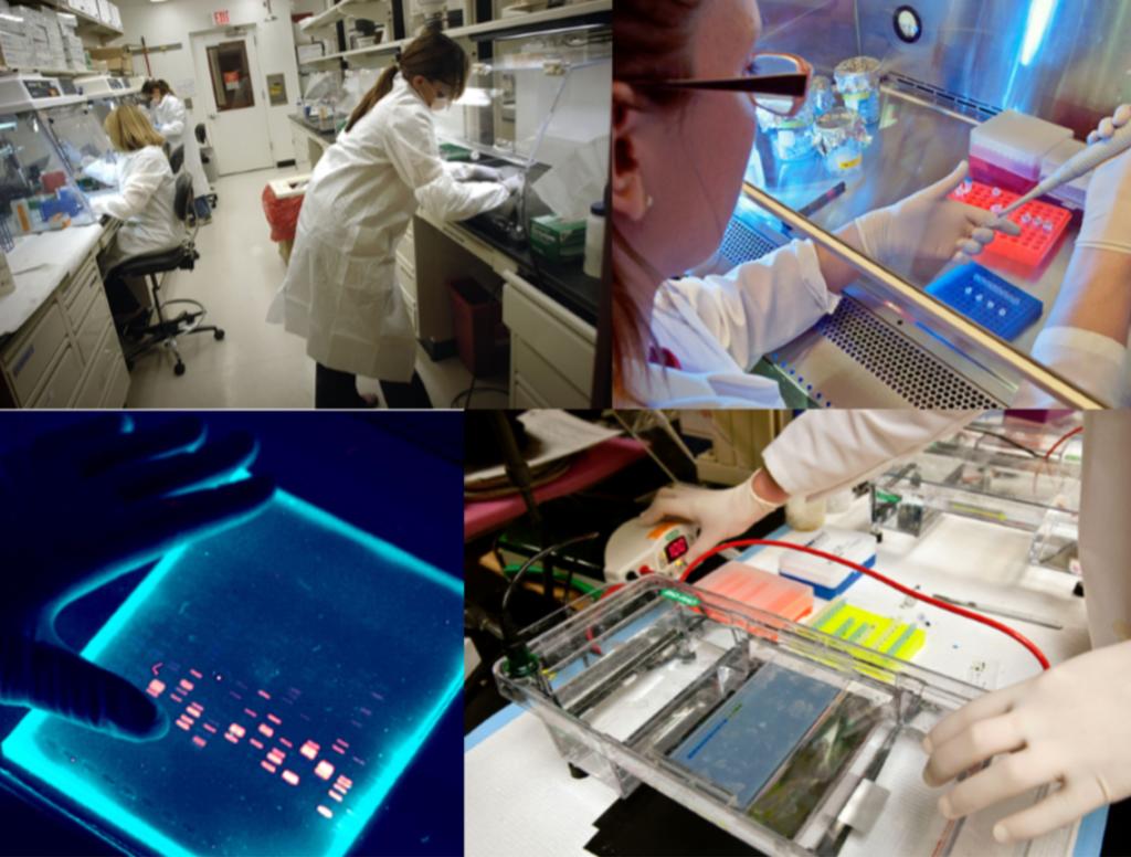 Kerns lab group