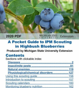 Cover photo for Blueberry Scouting Guide for Smartphones