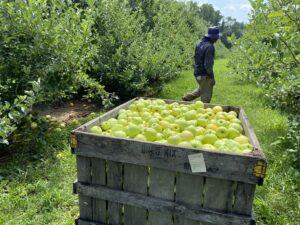 Cover photo for Produce Safety Alliance Growers Online Training- March 2021